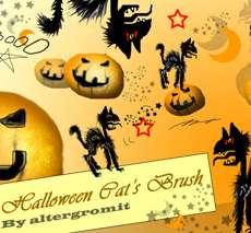 Halloween Cat Brushes